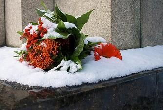 Snowbouquet